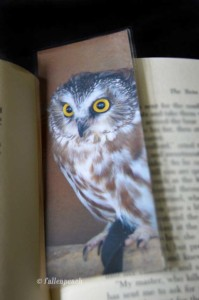 Bright Eyed Owl Bookmark by fallenpeach on Etsy